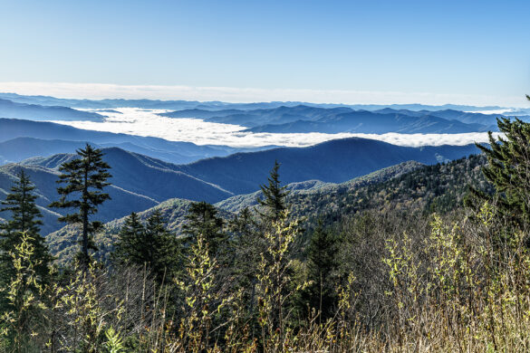 Great Smoky Mountains Panorama from Clingmans Dome